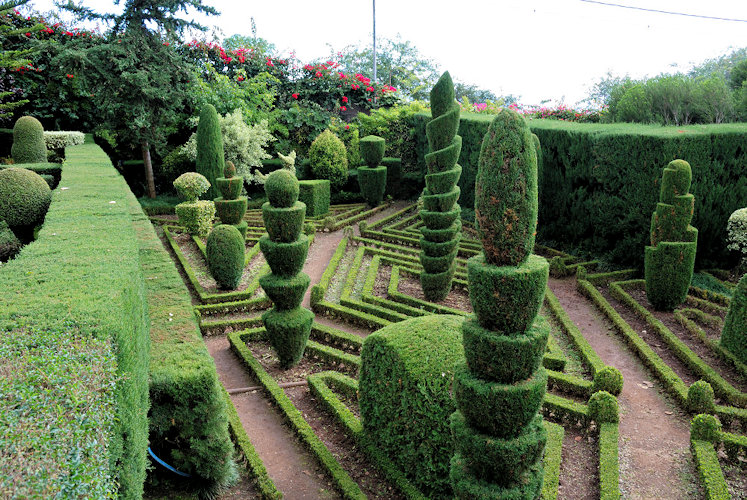 Topiary at the Botanic Gardens